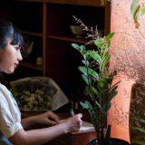 Plante benefice si vampiri energetici