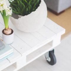 Decorarea apartamentelor – reguli si scopuri precise